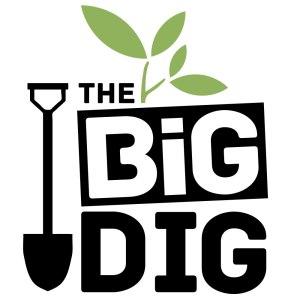 BigDigLogo_WebLarge